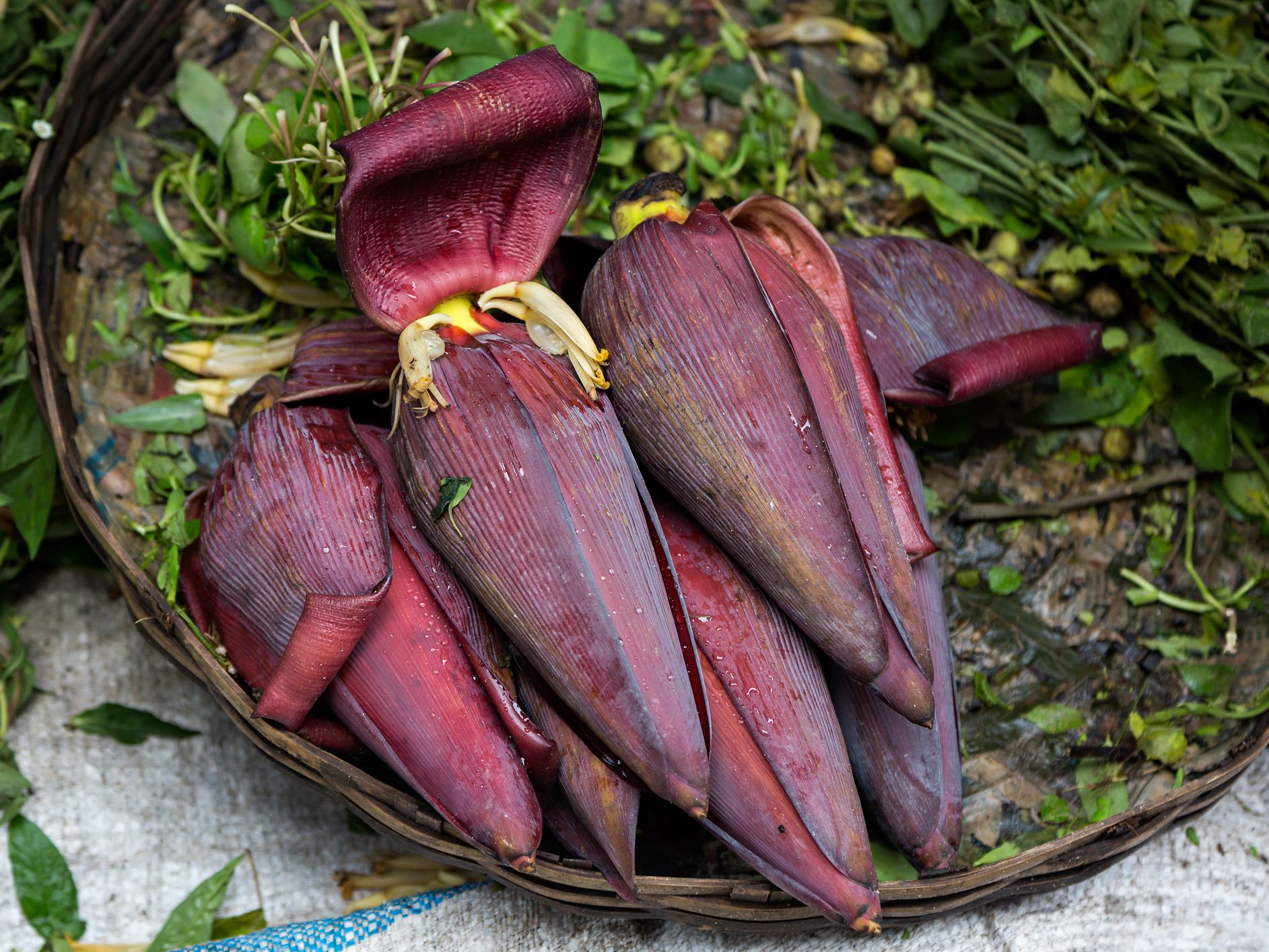 Banana Flower Is Edible